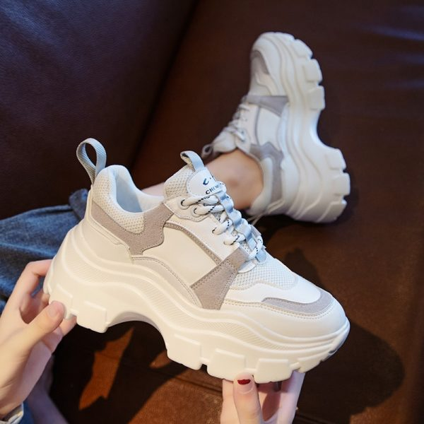 2020 Winter Platform Sneakers Women Spring 8CM Thick Bottom Dad Shoes Height Increased Casual Shoes Breathing Warm Leisure Shoes